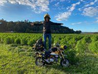 С миниатюрен мотоциклет Honda Monkey около света